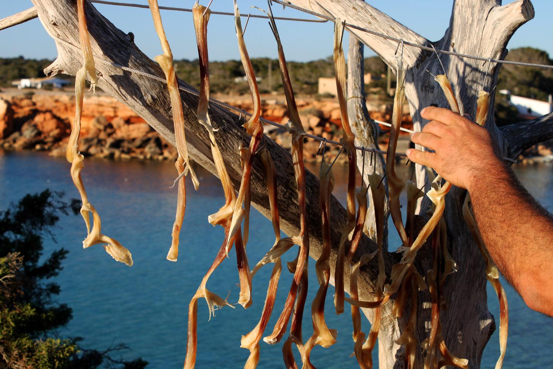 Resultado de imagen de la miel y la sal de Formentera