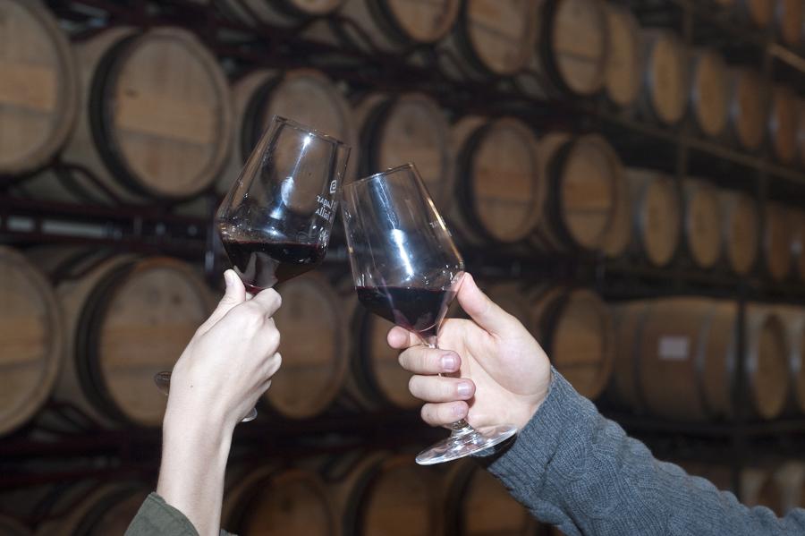 Existen multitud de opciones que ofrece Bodegas El lagar de Isilla para disfrutar de la cultura del vino.   Foto: Miguel Ángel Muñoz Romero