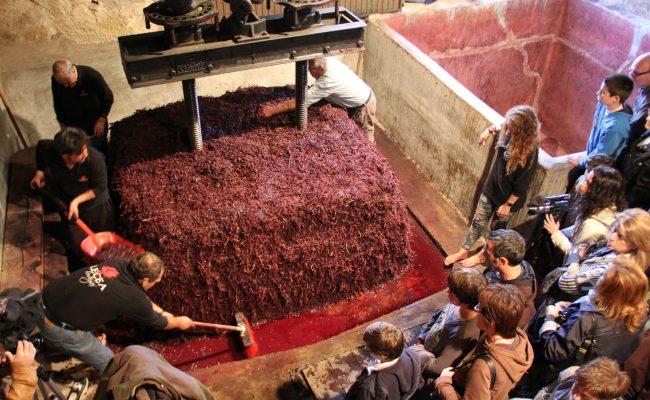 Ruta del Vino Rioja Alta Bodegas Lecea