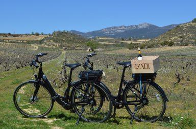 bici eléctrica IZADI
