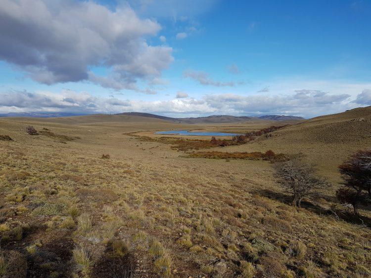 Familia Torres patagonia