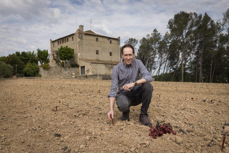 Castell de la Bleda Familia Torres