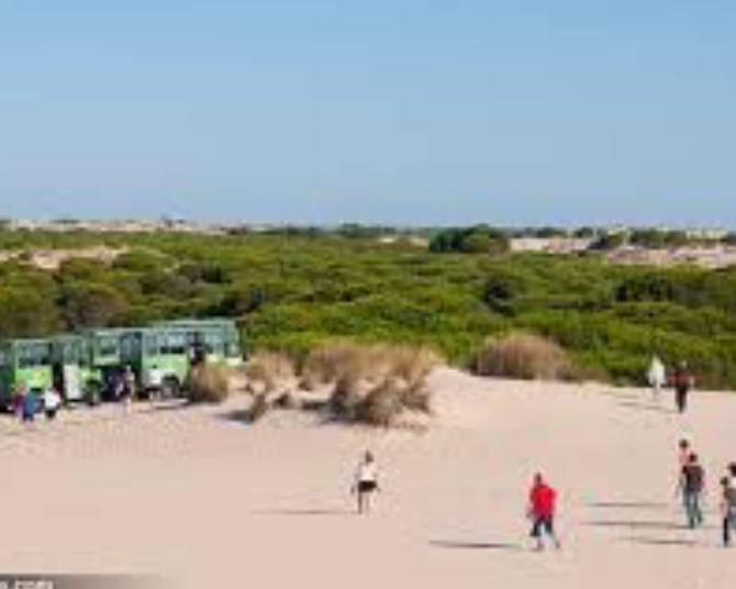 Sanlúcar Doñana
