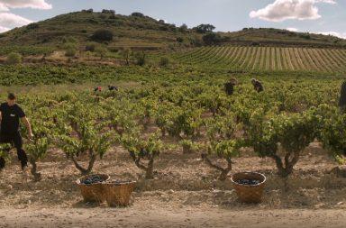 Finca El Monte Bodegas Riojanas