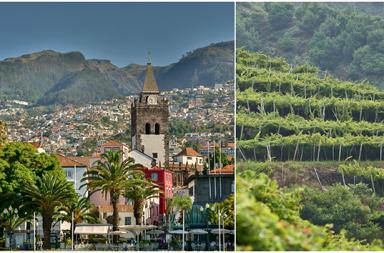 Gastronomía Madeira