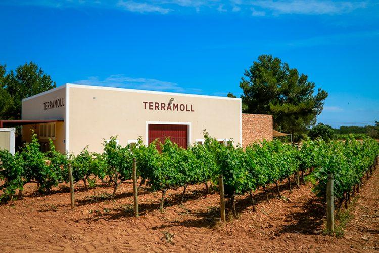 vino de Formentera