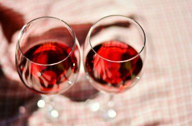 Actividades de Fomento de la Investigación sobre Vino y Salud